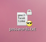 16 GB encrypted candy file