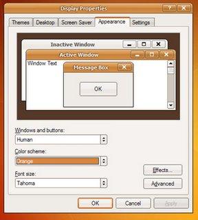 make windows look like ubuntu